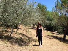 A Tuscan park we found with olive trees.